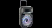 DRAAGBARE LUIDSPREKER 15''/38CM - 800W MET USB, BLUETOOTH, N