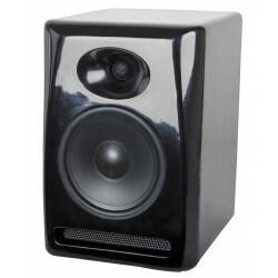 100W actieve 2-weg fiberglass luidspreker - zwart